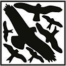 Vogelschutz- Set zum Aufkleben