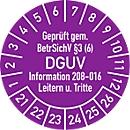 """Prüfplakette """"Geprüft gem. BetrSichV §3 (6) DGUV Information 208-016 Leitern u. Tritte"""