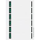 LEITZ® zelfklevende etiketten voor ordners, rugbreedte van 50 mm, pak van 150 stuks, licht grijs