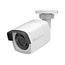 LevelOne GEMINI series FCS-5202 - Netzwerk-Überwachungskamera