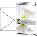 Trauerkarte Weiße Amaryllis, 10 Stück