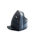 Vertikalmaus Evoluent C Wireless, für Rechtshänder, kabellos