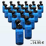 20er Set Desinfektionsmittel je 0,4 Liter, Standard