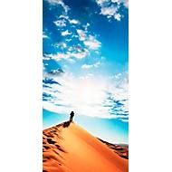 akoestisch fotopaneel, zandduinen, 800 x 1600 mm