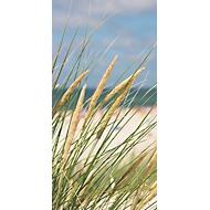 Akustik-Bild, Gräser, 800x1600 mm