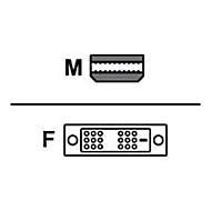 AMD DisplayPort-Adapter