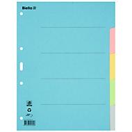 Biella Register Karton blanko A4, 5-teilig