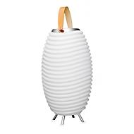 Bluetooth Lautsprecher Light Music Cooler, LED-Lampe & Getränkekühler, Größe S