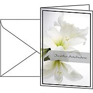 Carte de condoléances amaryllis blanche, 10 pièces