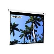 Celexon Professional electric Leinwand - 333 cm (131