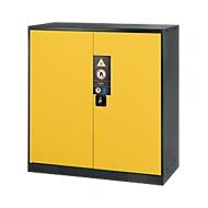 Chemicaliënkast, vleugeldeur, 2 legborden, 1055x520x1105 mm, veiligheid: