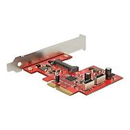 DeLock PCI Express Card > 2 x internal USB 3.1 Gen 2 - USB-Adapter