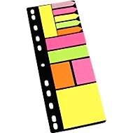 Distributeur de notes de couleurs INFO, avec perforations et différents formats