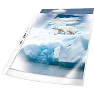 DURABLE Prospekthüllen Premium, DIN A4, oben offen, 100 Stück, genarbt, transparent