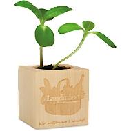 """Ecocube """"Vielen Dank"""", Ahornholz, mit Sonnenblumensamen & Substrattablette, inkl. Lasergravur 35 x 35 mm & Grundkosten"""