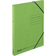 FALKEN Ringbuch, DIN A4, 2 Rund-Ring Mechanik, Rückenbreite 25 mm, grün