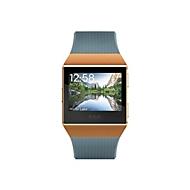 Fitbit Ionic intelligente Uhr - Burnt Orange, Slate Blue
