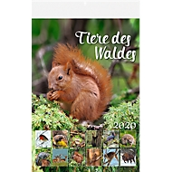 Kalender Tiere des Waldes