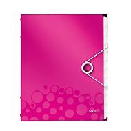 LEITZ sorteermap Active Wow, voor A4-formaat, 12 vakken, roze