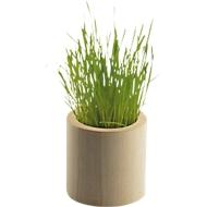 Pflanz Holz rund, Ahornholz, mit Blumensamen & Substrattablette, inkl. Werbedruck 4c Digital 160 x 40 mm + Grundkosten