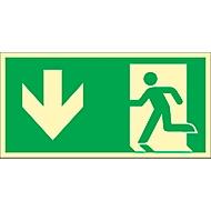 Schild Rettungsweg durch Ausgang, HLF