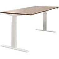 Schreibtisch NEVADA, einstufig elektrisch höhenverstellbar, B 1600 mm, Lärche grau/weiß