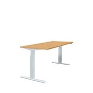 Tisch, einstufig elektrisch höhenverstellbar, B 1600 mm, Buche-Dekor/alusilber