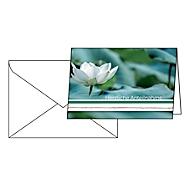 """Trauerkarte Sigel """"Water Lily"""", Format B6, 115 x 170 mm, mit weißen & gummierten Umschlägen, grün, FSC®-Glanzkarton, 10 Stück"""