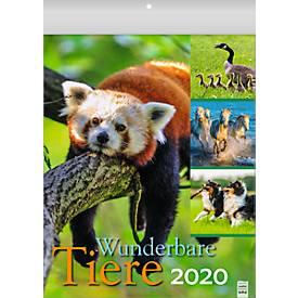 "Bildkalender ""Wunderbare Tiere"", B 245 x H 345 mm, deutschsprachig, Werbedruck je Monatsblatt"