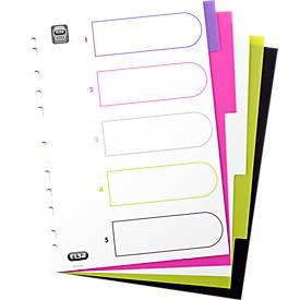 """ELBA PP-Register """"My Colour"""", zur freien Verwendung, einzeln"""