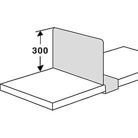 Fachteiler, für Stahlregal PROGRESS 2000, verschiebbar, T 300 mm