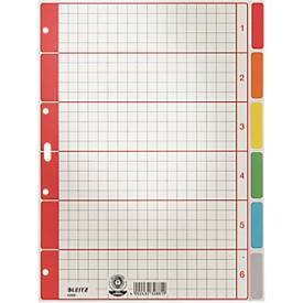 LEITZ® Karton Register, zur freien Verwendung, einzeln
