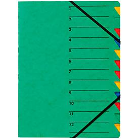 PAGNA Dokumentenmappe Easy, DIN A4, Gummizugverschluss, 12-teilig, grün