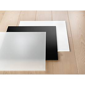 Plexiglas®-Einlagen