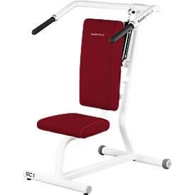 Sanocircle SC5, entraîne les épaules, pull down