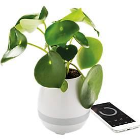 XD-Design Lautsprecher Blumentopf, Bluetooth, 10 m Reichweite, 7-farbiges LED-Licht