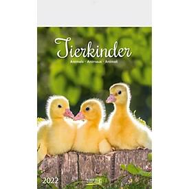 833060 - Wandkalender Tierkinder, B 235 x H 335 mm, Werbedruck 210 x 45 mm, Auswahl Werbeanbringung erforderlich