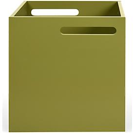 Box Holzbox Berlin, robuste Spanplatte, grün