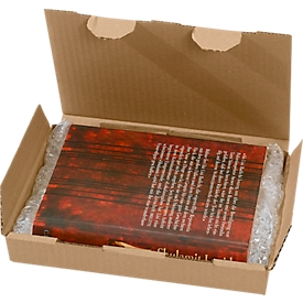 Caja de correo multiuso, 225 x 135 x 30 mm, 50 piezas