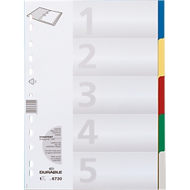 DURABLE PP-indexbladen, 5 bladen,
