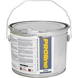 Hallenfarbe PROline-paint, silbergrau