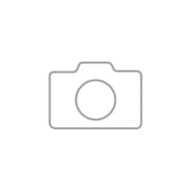 Juego de 6 sillas de madera con patas cromadas y 1 mesa de 1600 x 800 mm, gris claro