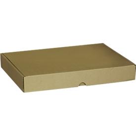 Maxibriefkartons-Versandschachteln, 233 x 170 x 45 mm, 50 Stück