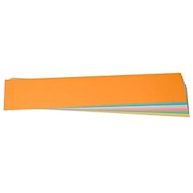 Presentatiekaartjes, titelstroken, 95 x 450 mm, 100 stuks, diverse kleuren