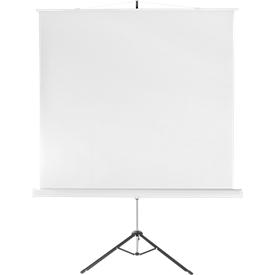 Projectiescherm Combi Flex, 2000 x 2000 mm