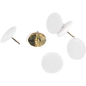 punaises, kunststof coating, wit, 100 stuks
