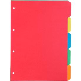 SCHÄFER SHOP karton indexbladen SET, gebruik naar eigen inzicht, 5 bladen, 5 kleuren