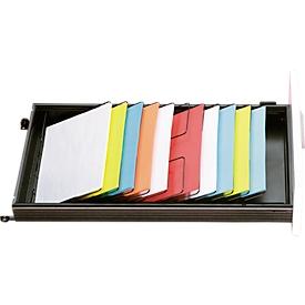Schäfer Shop Select Bandeja inclinada, para cajones con profundidad 600mm, 7 compartimentos DIN A4