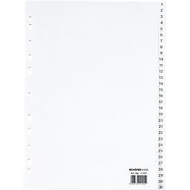 Schäfer Shop  Select PP ordner-indexbladen, A4-formaat, cijfers 1-31, wit