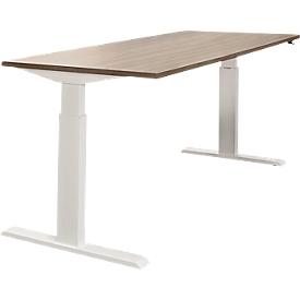 Schreibtisch NEVADA, elektrisch höhenverstellbar, Rechteck, T-Fuß, B 1600 x T 800 x H 715-1185 mm, Lärche grau/weiß